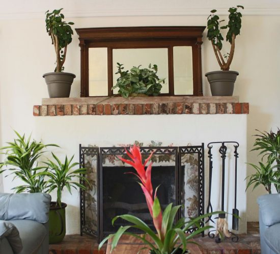 2036 Eucalyptus Avenue  Fireplace